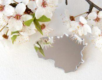 "Mirror brooch ""I love Lithuania"